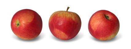 красный цвет 3 яблок Стоковые Изображения RF