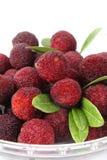 красный цвет bayberry стоковые изображения rf