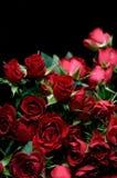 красный цвет boquet поднял Стоковое Фото