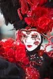красный цвет costume поднял Стоковое Фото