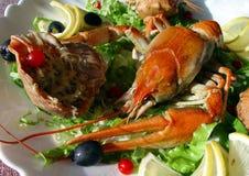красный цвет crayfish Стоковая Фотография