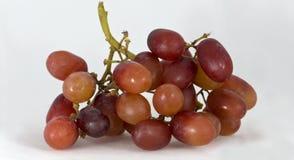 красный цвет grapes1 Стоковые Изображения RF