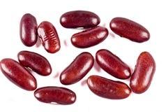 красный цвет haricot фасолей Стоковое Изображение RF
