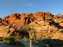 красный цвет las каньона трясет vegas стоковая фотография rf