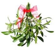 красный цвет mistletoe смычка зеленый вися Стоковые Фотографии RF