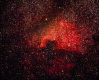 красный цвет nebula Стоковое Фото