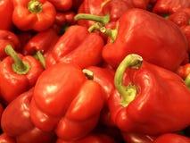 красный цвет paprica Стоковые Изображения RF
