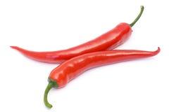красный цвет peperoni Стоковая Фотография