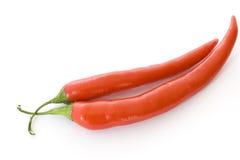 красный цвет peperoni Стоковые Фото