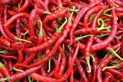 красный цвет pimiento Стоковое Фото
