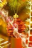 Красный шарик на рождественской елке Стоковые Изображения RF
