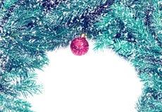 Красный шарик рождества на ветви ели на белой предпосылке C Стоковая Фотография RF