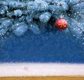 Красный шарик рождества на ветви ели Стоковая Фотография RF