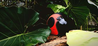 Красный шлем стоковые изображения rf
