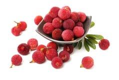 Красный bayberry, красный цвет, свежие фрукты стоковые изображения rf