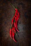 Красный chili Стоковая Фотография RF