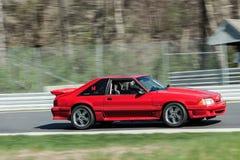 Красный Ford Мustang в движении на трассе Стоковые Изображения RF