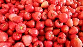 Красный guava меда Стоковое Изображение RF
