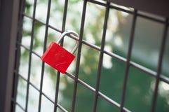 Красный padlock с форменным сердцем на металлической решетке Стоковое Изображение RF