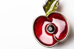 Красный Pin мака как символ день памяти погибших в первую и вторую мировые войны Стоковое фото RF