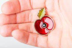 Красный Pin мака как символ день памяти погибших в первую и вторую мировые войны Стоковая Фотография