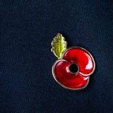 Красный Pin мака как символ день памяти погибших в первую и вторую мировые войны Стоковая Фотография RF