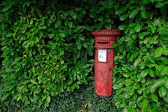 Красный postbox окруженный зелеными листьями Стоковые Фотографии RF
