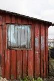 Красный shag Стоковая Фотография RF