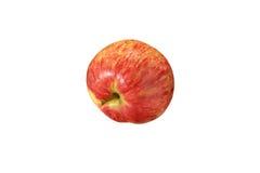 Красный striped конец яблока вверх на белой предпосылке Стоковые Изображения RF