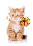 Красный striped котенок с смычком золота. Стоковые Изображения RF