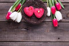2 красных горящих свечи в гнезде и ярких тюльпанах fl весны Стоковая Фотография RF