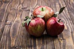 3 красных желтых яблока Стоковые Изображения
