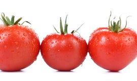 3 красных зрелых изолированного томата Стоковое Изображение RF