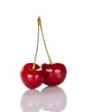 2 красных зрелых сладостных вишни Стоковое Изображение