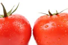 2 красных зрелых томата закрывают вверх. Стоковые Изображения