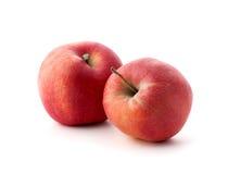 2 красных зрелых яблока Стоковые Изображения RF