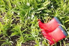 2 красных резиновых ботинка лежа в траве с snowdrops Стоковые Фотографии RF