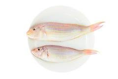2 красных свежих рыбы Стоковое Изображение