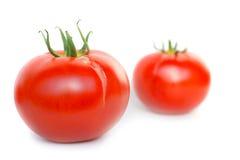 2 красных свежих томата Стоковое фото RF