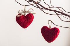 2 красных сердца, вися на ветви сверх Стоковые Фотографии RF