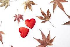 2 красных сердце и листь осени Стоковое Фото