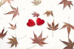 2 красных сердце и листь осени Стоковые Изображения RF