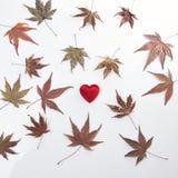 2 красных сердце и листь осени Стоковое Изображение RF