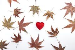 2 красных сердце и листь осени Стоковая Фотография RF