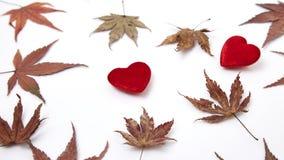 2 красных сердце и листь осени Стоковые Фотографии RF