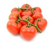10 красных томатов на лозе Стоковое Фото