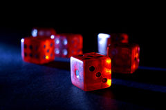 6 красных цветов Dices на черноте Стоковые Фото