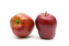 2 красных яблока на белой предпосылке Стоковое Фото