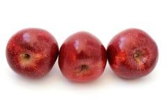 3 красных яблока склонный Стоковые Изображения RF