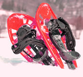 2 красных snowshoes в горах в зиме Стоковые Фотографии RF